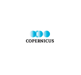 Logo_0008_Capa 6